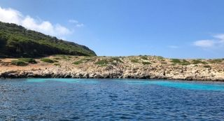 Favignana and Levanzo tour: one day on the Egadi Islands - 9